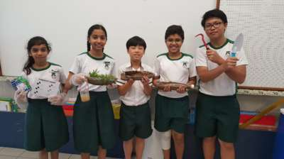 Primary 5 Project Title: Plants as Water Filters (Certificate of Commendation)