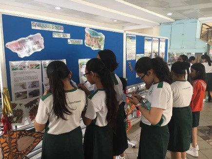 MTF-Malay Language: Student reading about Malay culture and completing the quiz